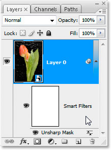 The Layers palette in Photoshop CS3 with a smart filter applied to the smart object.
