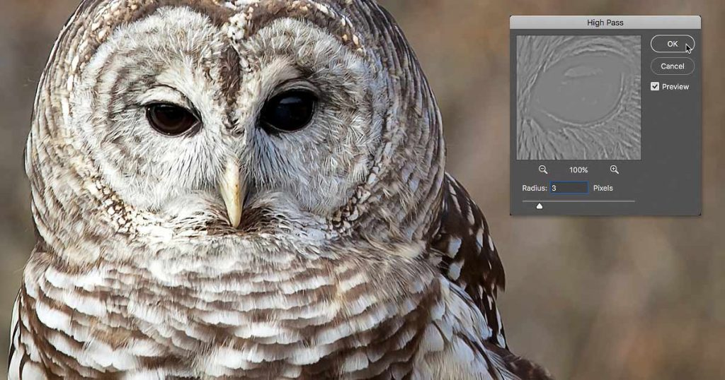 How to sharpen images with High Pass in Photoshop