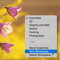 Photoshop CC Workspaces Tutorial